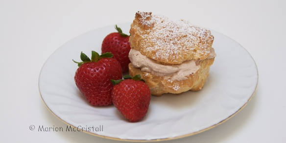 creampuffandstrawberriescopyright