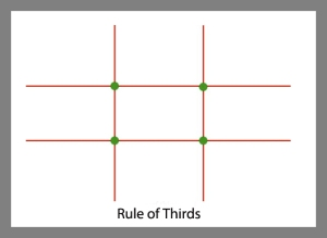 Photography Quick Tip 3 ~ the Rule of Thirds in Composition
