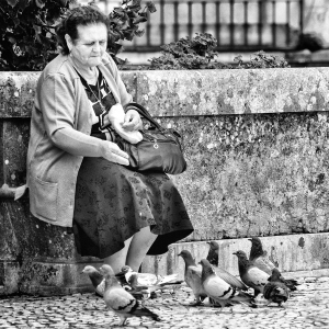Kelby Walk pigeon feeder POR 2014 BW